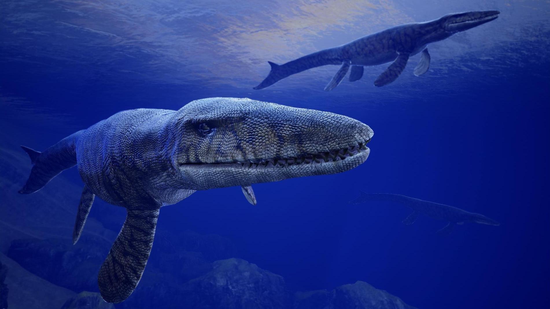 Картинки акула мозазавр